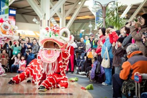 A traditional lion dance ushers in good luck to the Year of the Horse as part of Chinese New Year celebrations at YVR.