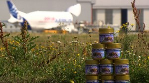 Honey collected from beehives in two locations at Airbus' Hamburg, Germany facilities is used to help the company monitor its environmental footprint, as well as jarred and given away as presents to customers, suppliers and Airbus staff. Photo: courtesy Airbus.