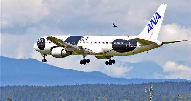 All Nippon Airways Boeing 767. Photo: Jim Jorgenson