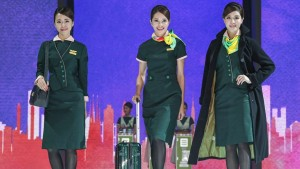 Verdelite (green-coloured tourmaline) was the base colour chosen for EVA Air's third-generation uniforms.